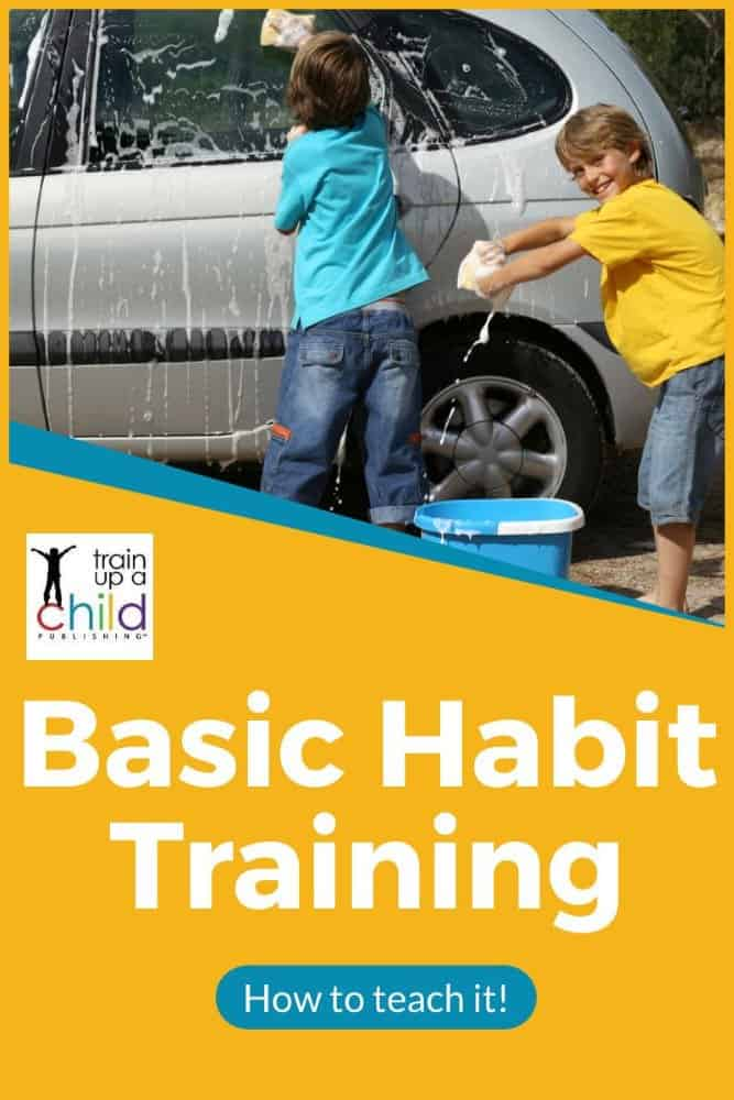 Basic Habit Training: boys washing the car