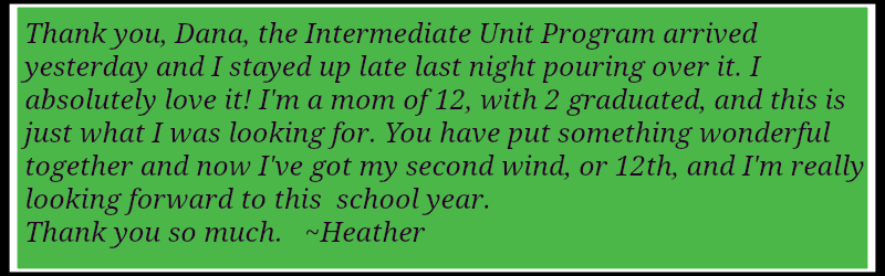 intermediate unit program testimony